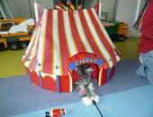 Hippee Hoppe fait son cirque - chatterie moonwalk